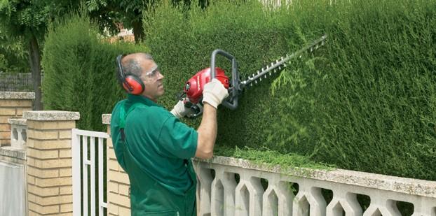 Cortasetos mantenimiento, consejos prácticos